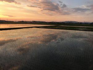 前田ネームからの風景です
