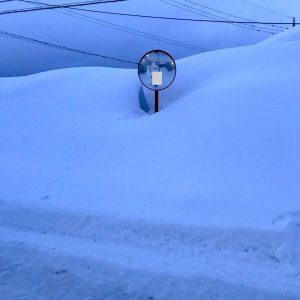 会社周辺の雪